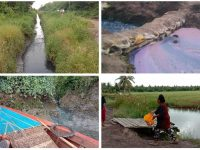 Limbah PT BAP  Air Sungai Keluarkan Bau Busuk dan Warna Gelap