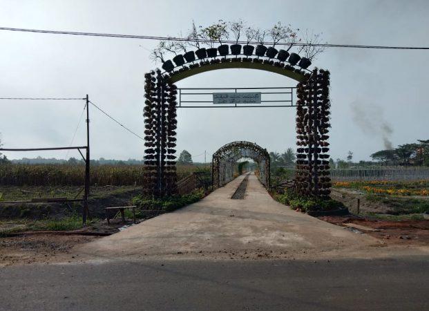 Wajah Taman Agro Inovasi TPHP Muba Setelah Berakhirnya PEDA KTNA Ke-XIII