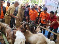 Bupati Tanggamus Buka Bazar Hewan Kurban
