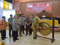 Pangkas Birokrasi Perizinan, DPMPTSP Launching 'Tanggamus Tahun Investasi'